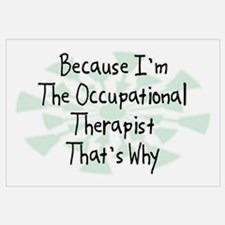Because Occupational Therapist