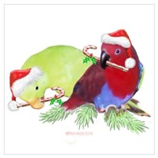 Trish's Parrots Christmas Poster