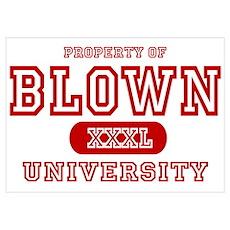 Blown University Property Poster