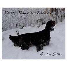 Gordon Setter: Beauty, Brains and Birdsense Poster