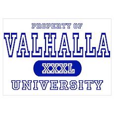 Valhalla University Poster