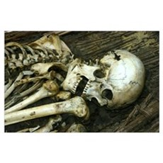Mummy Skeleton Poster