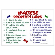 Maltese Property Laws 2 Canvas Art