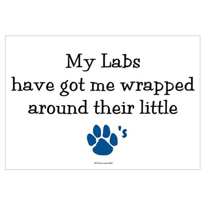 Wrapped Around Their Paws (Lab) Canvas Art