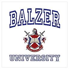 BALZER University Poster