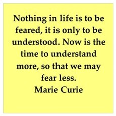 pierre and marie curie quote Poster