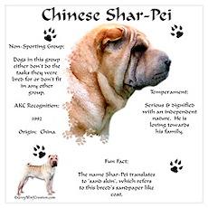 SharPei 1 Poster