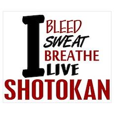 Bleed Sweat Breathe Shotokan Poster