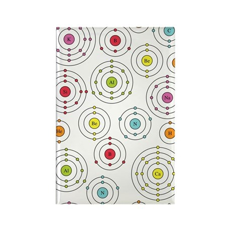Periodic Shells Rectangle Magnet (10 pack)