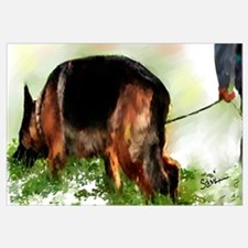 German Shepherd Tracking