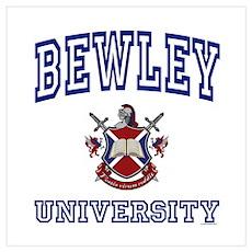 BEWLEY University Poster