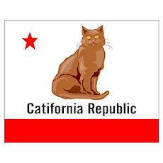 Catifornia Flag Poster