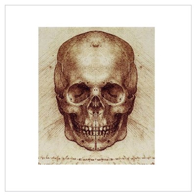 Da Vinci Skull Poster
