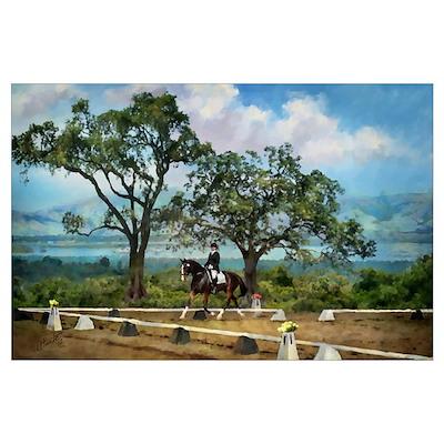 Woodside Trot Dressage Horse 11x17 Print Poster