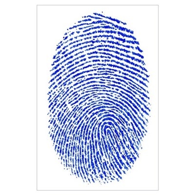 Blue Fingerprint Poster