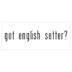 Got English Setter? Poster