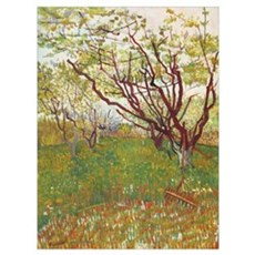 Cherry Tree Canvas Art