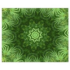 Marijuana Leaf Kaleidoscope Framed Print