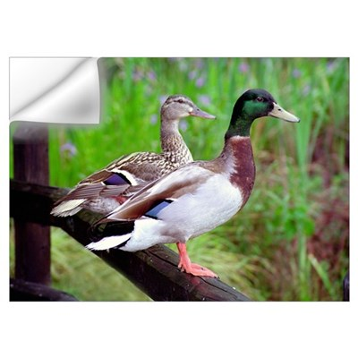 2 Mallards On a Fence Wall Decal