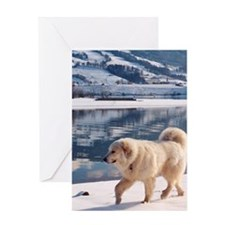 Great Pyrenees Greeting Card - Lake