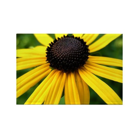Yellow Flower965 Rectangle Magnet