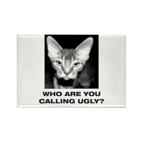 Ugly Cat Magnet