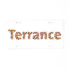 Terrance Fiesta Aluminum License Plate