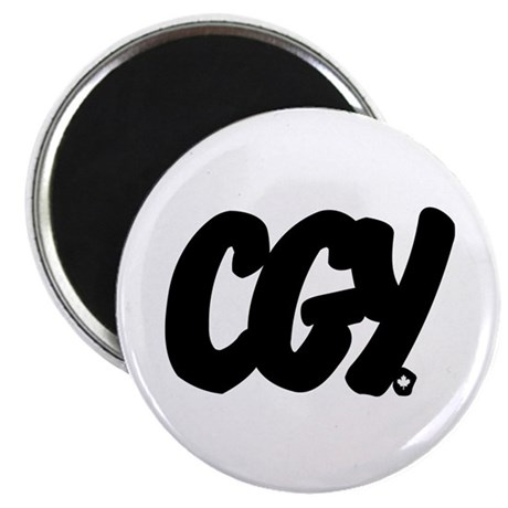CGY Brushed Magnet