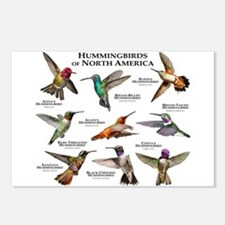 Hummingbirds of North America Postcards (Package o
