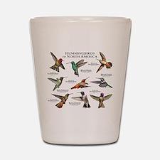 Hummingbirds of North America Shot Glass