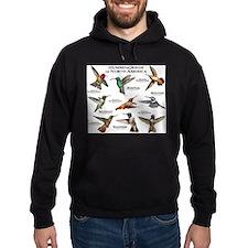 Hummingbirds of North America Hoodie