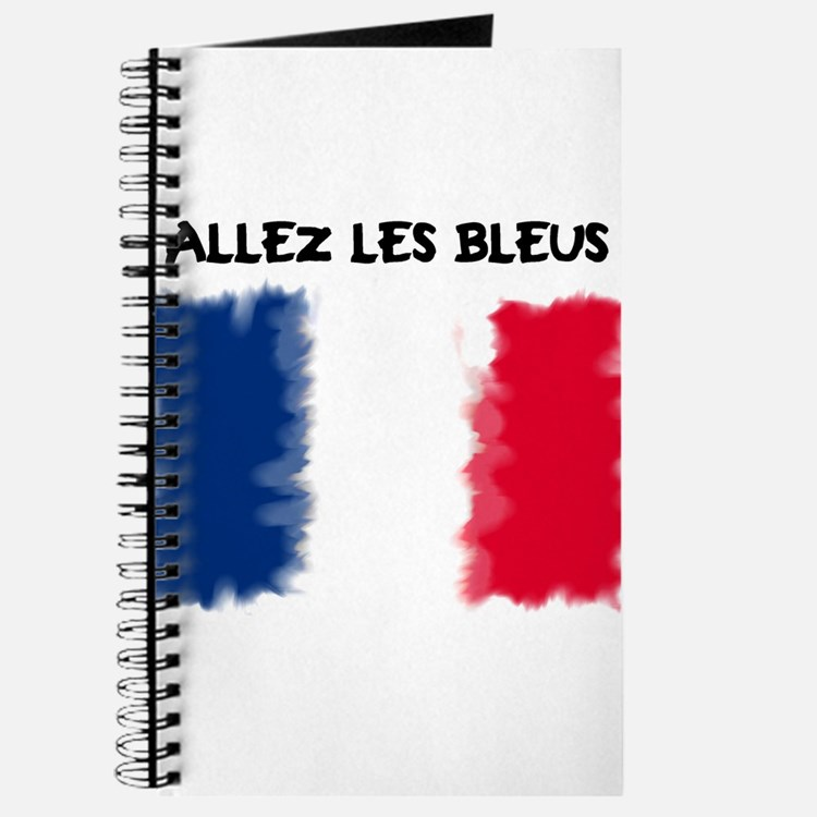 France World Cup 2010 Journal