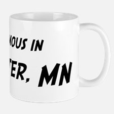 Famous in Rochester Mug