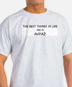 Best Things in Life: Ahvaz Ash Grey T-Shirt