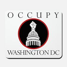 Ocuppy Washington DC Mousepad