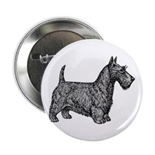 "Scottish Terrier 2.25"" Button"