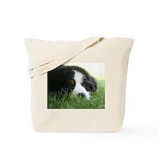 Bernese Puppy Tote Bag