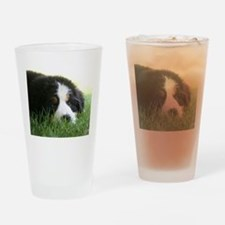 Bernese Puppy Drinking Glass