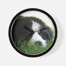 Bernese Puppy Wall Clock