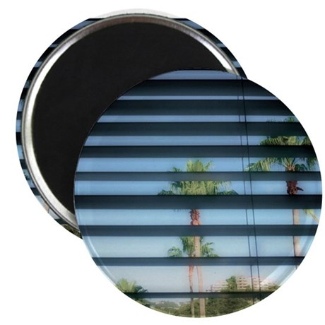 shady palm trees Magnet