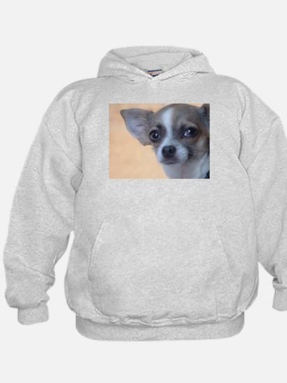 Artsy Dog Hoody