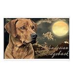 Moonlit Ridgeback Postcards (Package of 8)