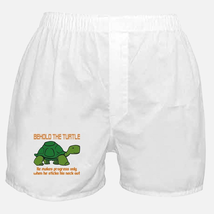 Behold the Turtle Boxer Shorts