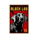 Obey the BLACK LAB! Magnets (10 pack)