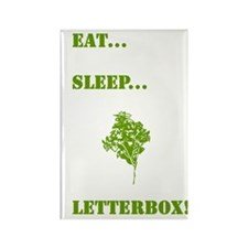 Letterboxing Rectangle Magnet 2