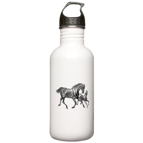 Beautiful Mare and Foal Stainless Water Bottle 1.0