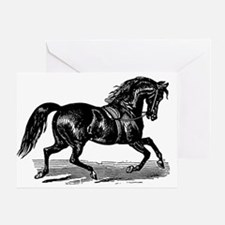 Shiny Black Stallion Horse Greeting Card