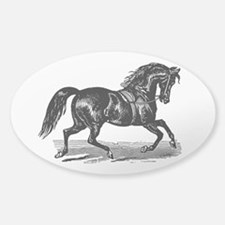 Shiny Black Stallion Horse Sticker (Oval)