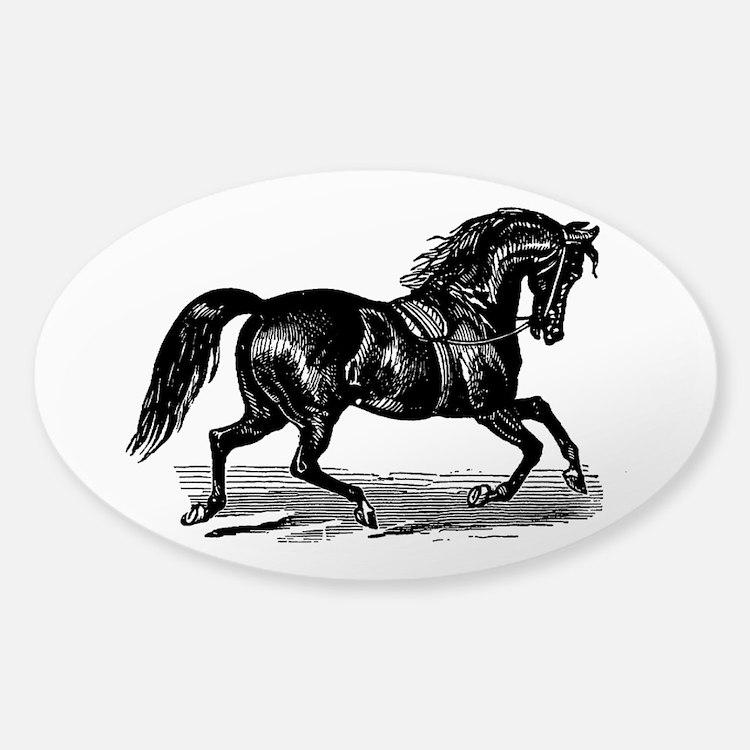 Shiny Black Stallion Horse Sticker (Oval)