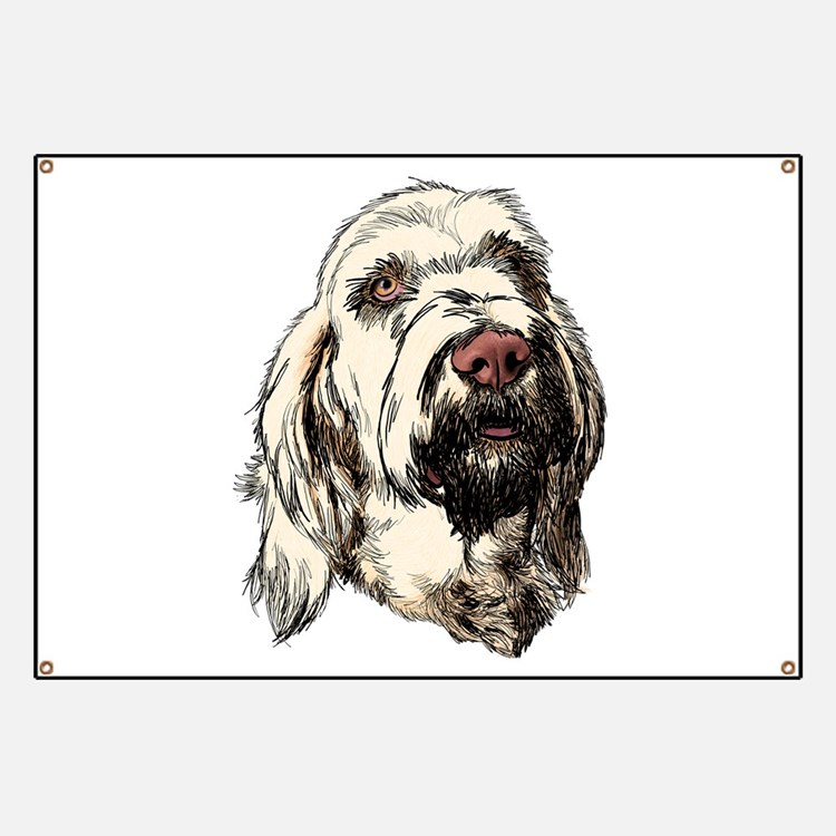 Spinone Banner